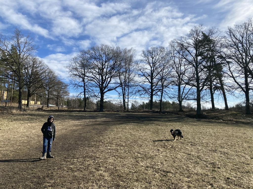 Ein Kind steht links im Bild auf einem Feld, rechts ein schwarzer Hund. Im Hintergrund kahle Bäume und blauer Himmel mit weißen Wolken. Das Bild zeigt, dass der Junge sich mit dem Hund wohl fühlt.
